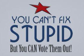 Cant fix stupid