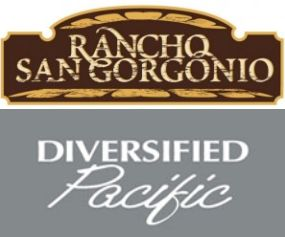 Diversified Pacific is the developer of the Rancho San Gorgonio Project